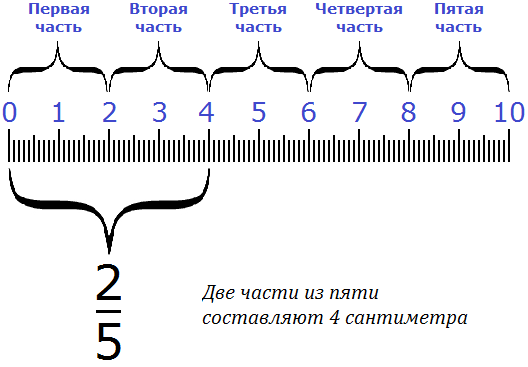 две части из пяти составляют четыре сантиметра