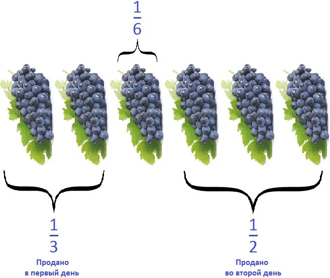 шесть частей винограда